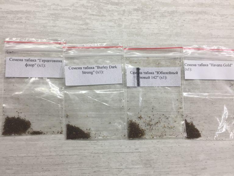 Посев семян табака на рассаду