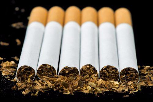 Набор семян табака для сигарет