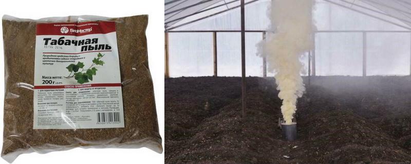 Окуривание табачной пылью